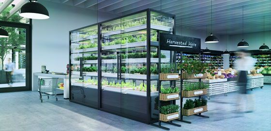 INDOOR FARMING
